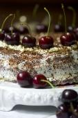 tort czarny gaj